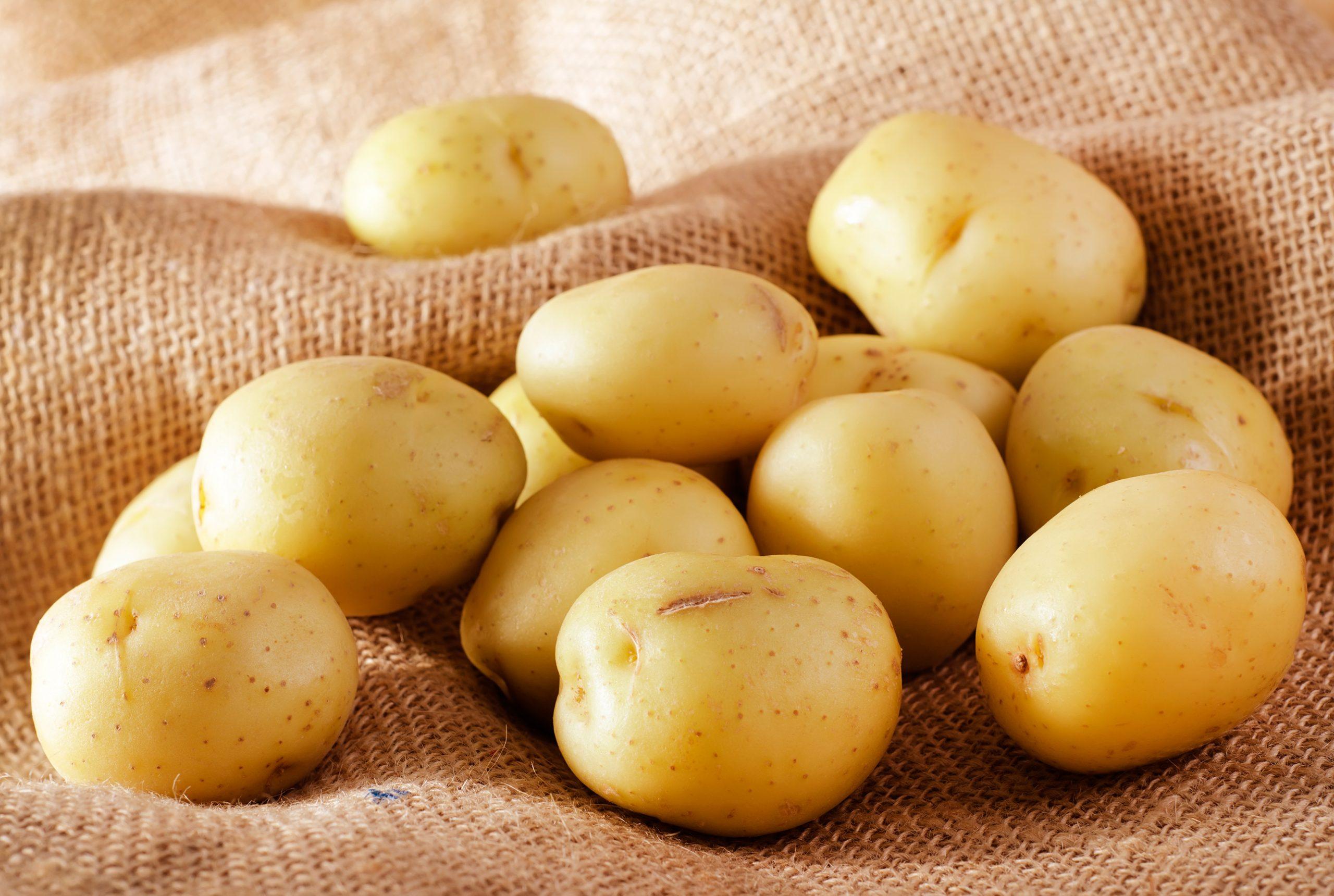 Turbo Wie Kartoffeln am besten aufbewahren? - Tipps & Tricks | Swissmilk XI82