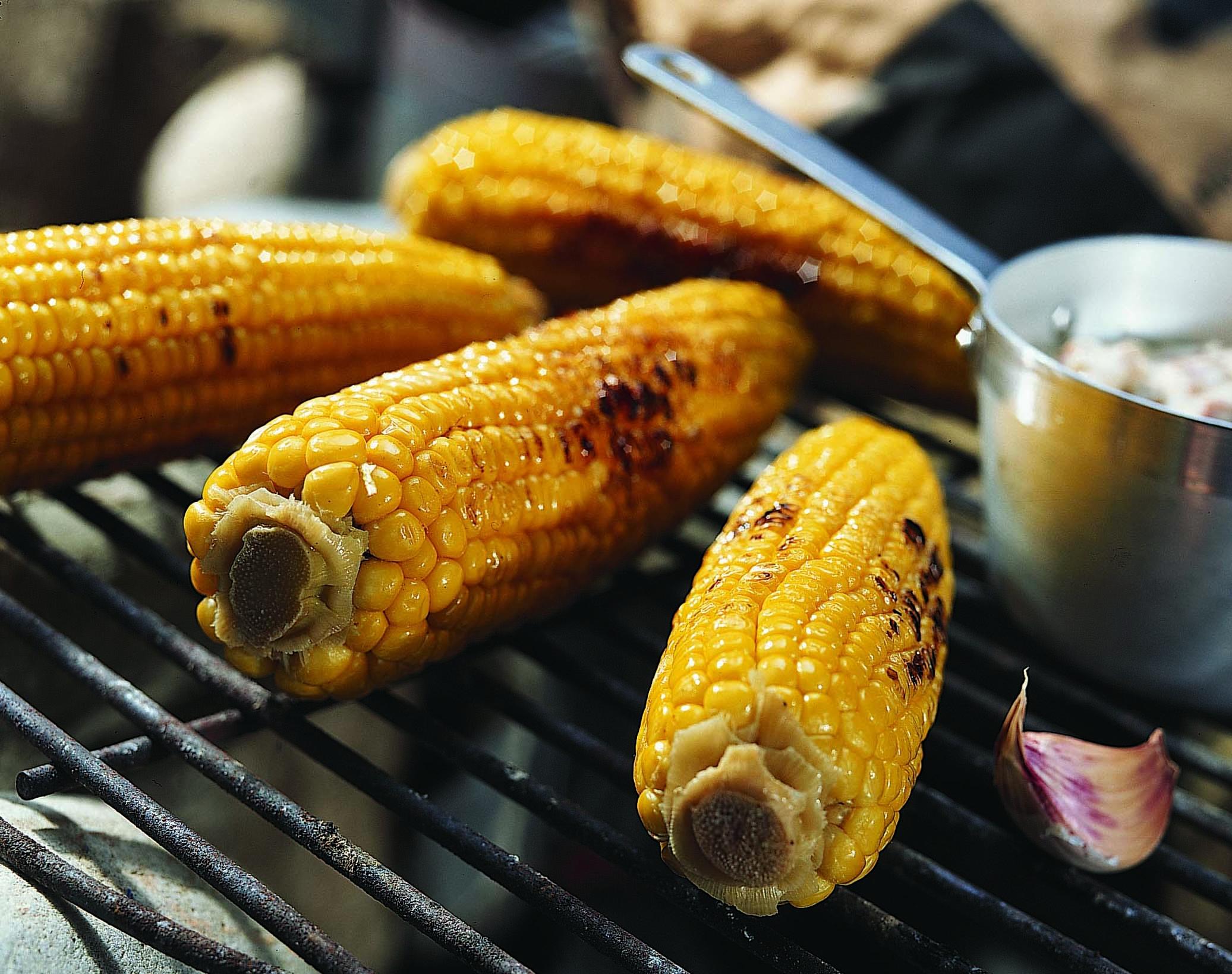 Maiskolben vom Grill mit Speckrahmsauce